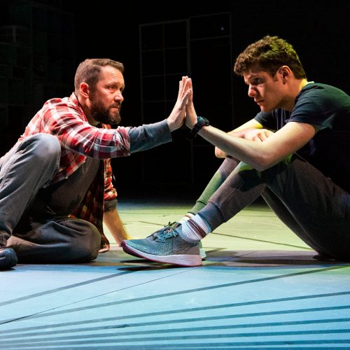 Greenway-Court-Curious-Incident